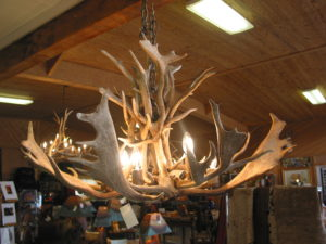 Fallow Chandelier with 8 lights $1800