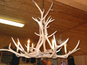Antler Chandelier 12 Light Regular price $3695 Sale price $3350