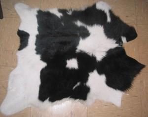 Calf. #3164 $109
